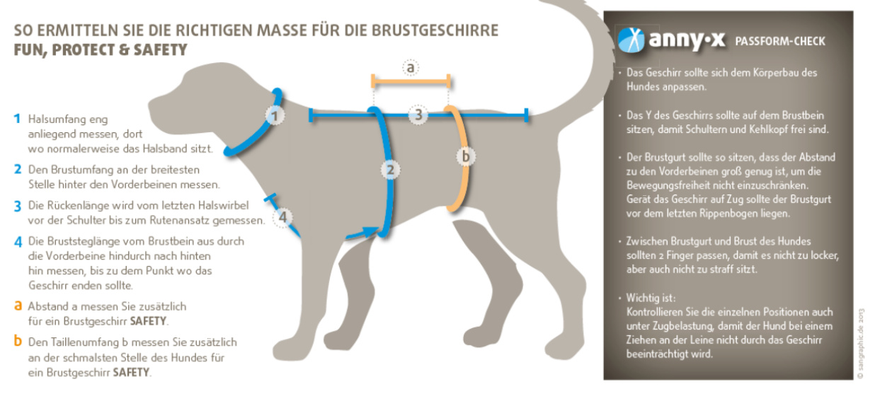Maase-f-r-Hundegeschirr