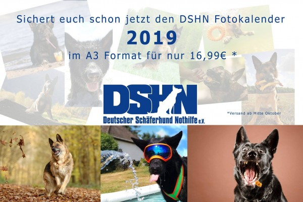 DSHN_Fotokalender2019